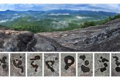 LGR Language of the Landscape